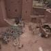 casbah courtyard