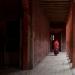 boy in monastery